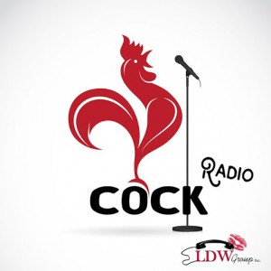 Vector image of an cock design on white background